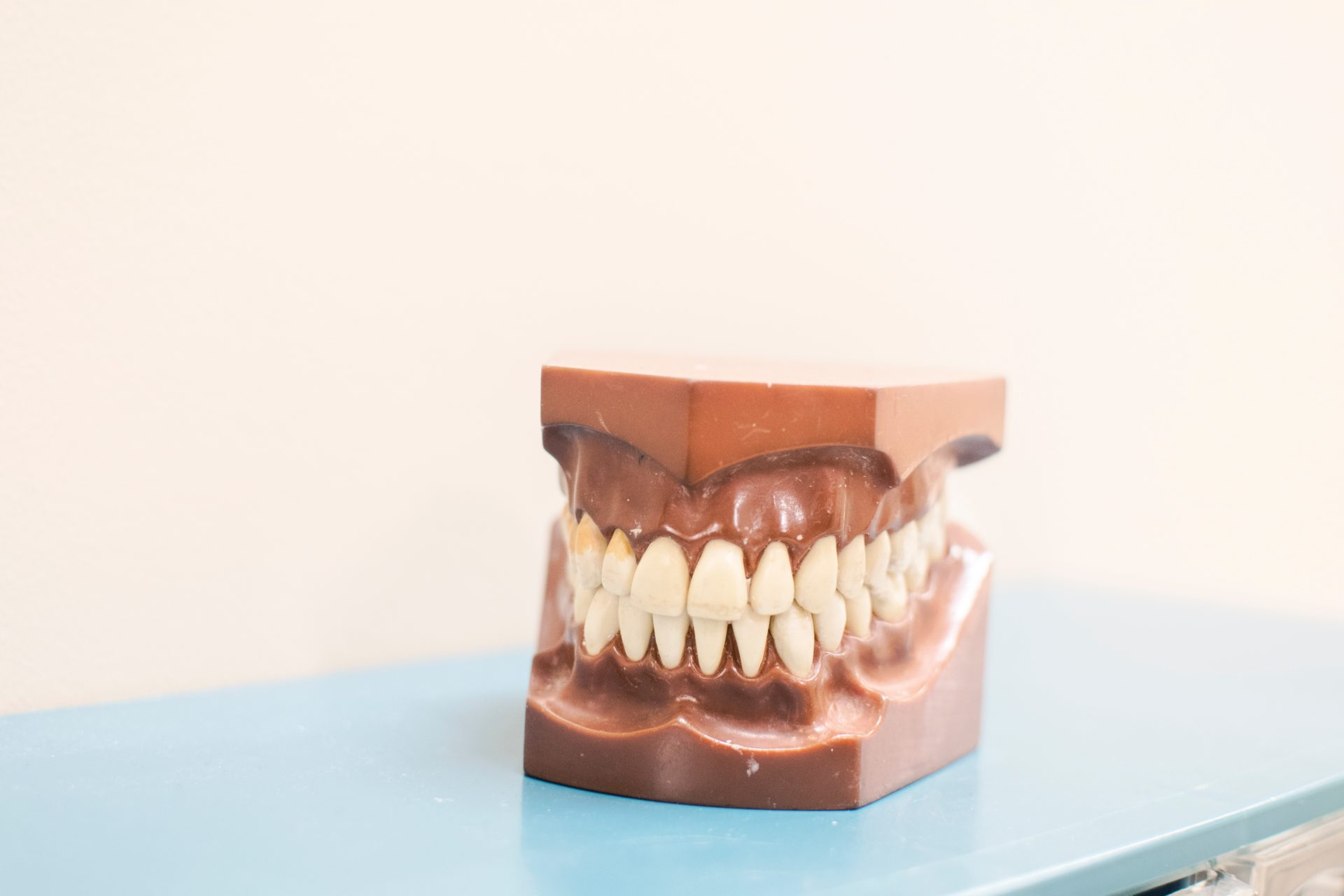 """Little-Known Fact: """"EVERYONE has TMJ."""""""
